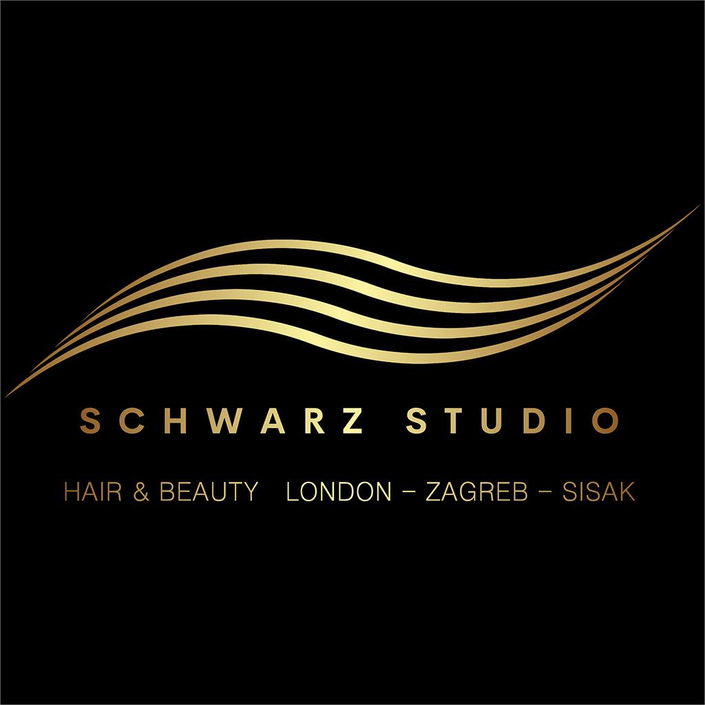 Logo schwarz studio